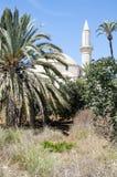 Hala Sultan Tekke à Larnaca, Chypre photos libres de droits