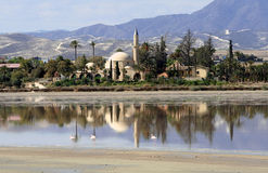 Hala Sultan Tekke royalty free stock images