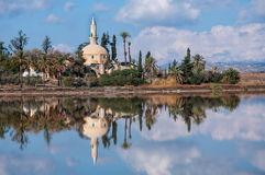 Hala Sultan Tekke in Cyprus Royalty Free Stock Images