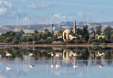 Hala Sultan Tekke in Cyprus. Hala Sultan Tekke or Mosque of Umm Haram is a Muslim shrine on the west bank of Larnaca Salt Lake in Cyprus Royalty Free Stock Photography