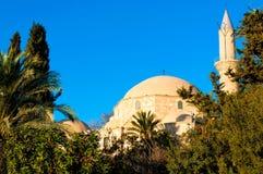 Hala Sultan Tekke eller moskén av Umm Haram Larnaca Cypern Royaltyfri Bild