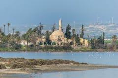 Hala Sultan Tekke en Chypre Larnaca images libres de droits
