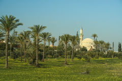 Hala Sultan Tekke mosque Stock Photo