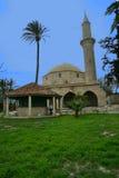 Hala Sultan Tekke på Larnaca, Cypern Fotografering för Bildbyråer