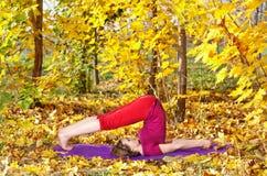 Halasana de la yoga en otoño Imagen de archivo libre de regalías