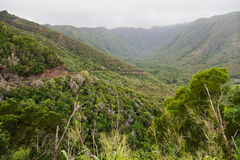 Halawa Valley on Molokai. At the northeastern tip of Molokai, the road US 450 ends in the Halawa Valley. The two waterfalls in the background,  yes, there are 2 Royalty Free Stock Photos