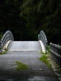 Halb Augenhöhlenbrücke Stockbild