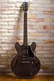 Halb hohle Gitarre Stockbilder