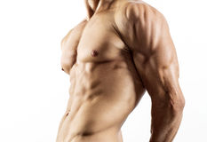 Halb nackter sexy Körper des muskulösen athletischen Sportlers Lizenzfreie Stockbilder