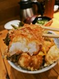 Halbe Bissgarnele japanischer Tempura-Lebensmittelsatz lizenzfreie stockfotografie