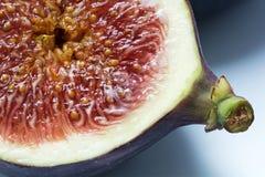 Halbe Feige, Makroschuß zeigt die saftige Masse mit Samen Lizenzfreie Stockfotografie