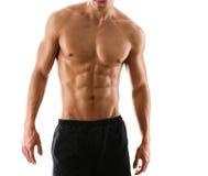Halbe nackte sexy Karosserie des muskulösen Mannes Stockfotografie