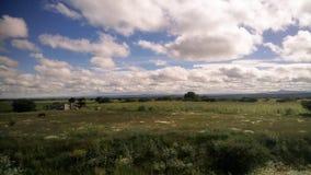 Halber Himmel, halbes Grasland stockfoto