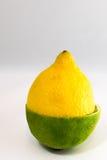 Halber Kalk der halben Zitrone der Zitrusfrucht stockfotos