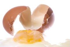 Halbes gekochtes Huhn-Ei getrennt Stockfoto