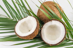 Halbierte und ganze frische Kokosnüsse mit Blättern Stockbild