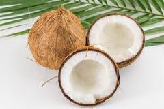 Halbierte und ganze frische Kokosnüsse mit Blättern Stockfotos