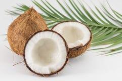 Halbierte und ganze frische Kokosnüsse mit Blättern Stockbilder