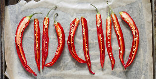 5 halbierten rote Paprikas auf einem Backblech Lizenzfreie Stockbilder