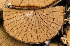 Halbkreisförmiges Stück Holz im Woodpile Stockfotos
