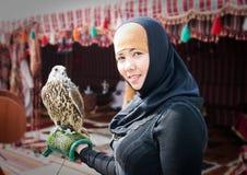 Halcón árabe Fotografía de archivo