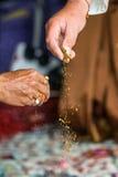 Haldi仪式,印第安婚礼 免版税库存照片