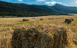 Hale bale. At the foot of Smedovets, near the village of Varbovchets stock photos