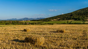 Hale bales in the field. Near the village of Varbovchets and in the back you can see one of the first mountain tops of Stara Planina Stock Photography