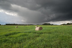 Hale bales on a green meadow. Hay bales on a green meadow on background of cloudy sky Royalty Free Stock Images