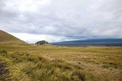 HaleakalÄ 国立公园-美好和不同的生态系 免版税库存图片