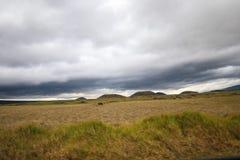 HaleakalÄ 国立公园-美好和不同的生态系 免版税图库摄影