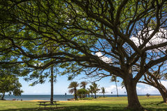 Haleiwa Park in North Shore, Oahu, Hawaii Royalty Free Stock Images