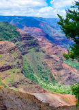 Halemanu Trail, Waimea Canyon, Kauai, Hawaii, USA. Views from a hiking trail on Waimea Canyon, Kauai, Hawaii, USA Stock Photos