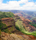 Halemanu Trail, Waimea Canyon, Kauai, Hawaii, USA. Views from a hiking trail on Waimea Canyon, Kauai, Hawaii, USA Royalty Free Stock Photos