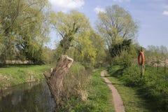 Halesworth千年绿色,萨福克,英国 免版税库存图片
