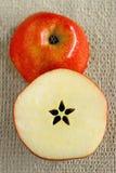half äpplesnitt Arkivbilder