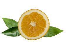 Half A Orange Stock Images