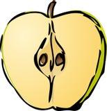 Half apple. Sliced half green apple isometric illustration golor gradient lineart hand-drawn sketch Stock Photos