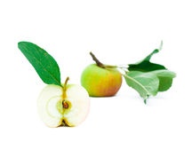 Half of apple with a green leaf. Half of young apple with a green leaf Royalty Free Stock Photo