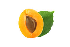 Half apricot with stone and leaf isolated. On white background Stock Photography