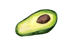 Half of avocado Stock Photography