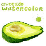 Half avocado , watercolor painting on white background. Healthy food Royalty Free Stock Photos