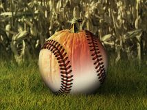Half Baseball Half Pumpkin in Fall Setting Royalty Free Stock Image