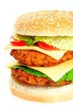 Half of a big hamburger Royalty Free Stock Photography