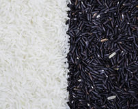 Half black and half white rice grain Stock Photography