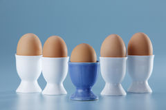 Half boiled egg Royalty Free Stock Image