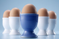 Free Half Boiled Egg Stock Images - 16920714