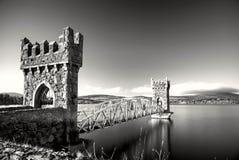 Half bridge wicklow Royalty Free Stock Images