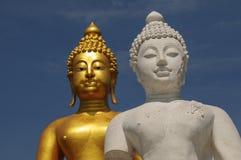 Half buddhas statue. White buddha with golden buddha background Stock Image