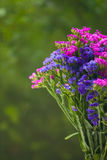 Half of Bunch of flowers in a rainy day Royalty Free Stock Photos